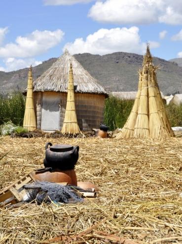 A reed village